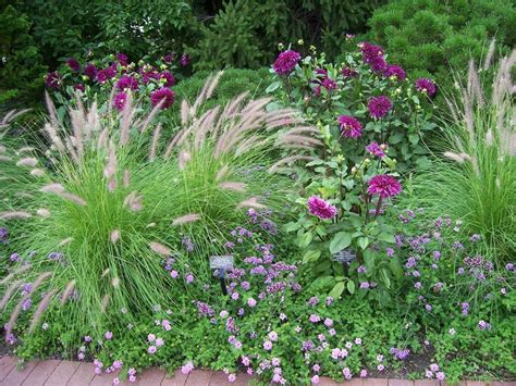 Basic Design Principles Using Color In The Garden Study Of Flower Colours In The Garden