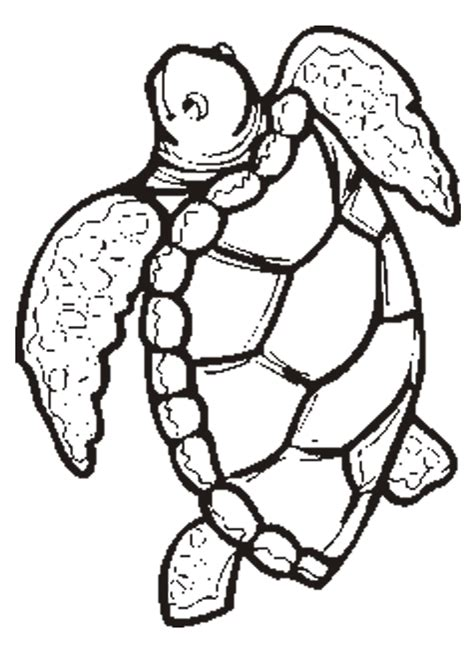 free printable animal quot turtle quot coloring pages