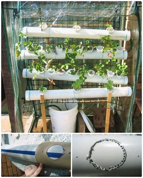 1000 images about hydroponic and aquaponic designs on