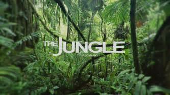 the jungle teaser on vimeo
