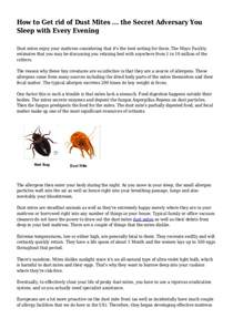 how to get rid of bed mites how to get rid of dust mites the secret adversary you