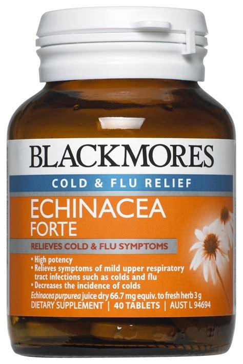 Blackmores Echinacea Forte 40 Tabs buy blackmores echinacea forte 40 tabs