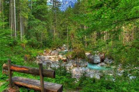 stream bench bench near forest stream 4k ultra hd sfondo and sfondo