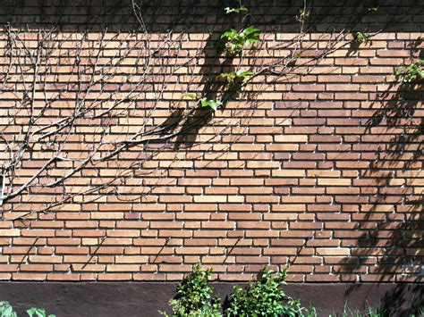 types of bricks for garden walls file solna brick wall 4 skifts munkforband jpg wikimedia