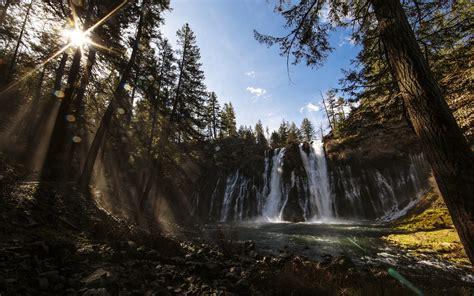 wonderful forest waterfall wide desktop background wall