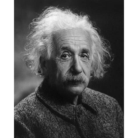 albert einstein biography report albert einstein as a mathematician www pixshark com