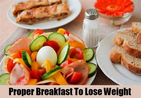 powered by hotaru diet healthy lose weight diet plans to lose weight few easy tips power diet for