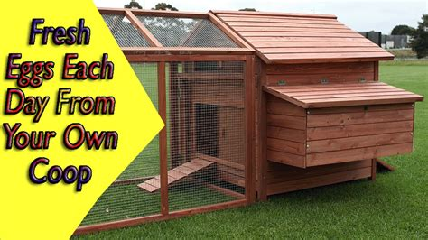 building a hen house free plans how to build a chicken house chicken coop ideas plans youtube