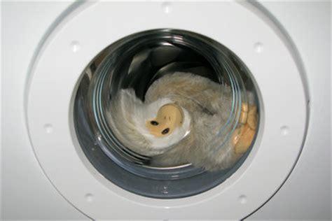 Halterung Trockner Auf Waschmaschine by Trockner Auf Waschmaschine Eine Halterung F 252 R Die Wand