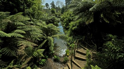 Lost Gardens Of Heligan gardens the lost gardens of heligan