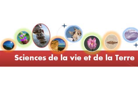 sciences de la vie pin sciences de la vie et terre on