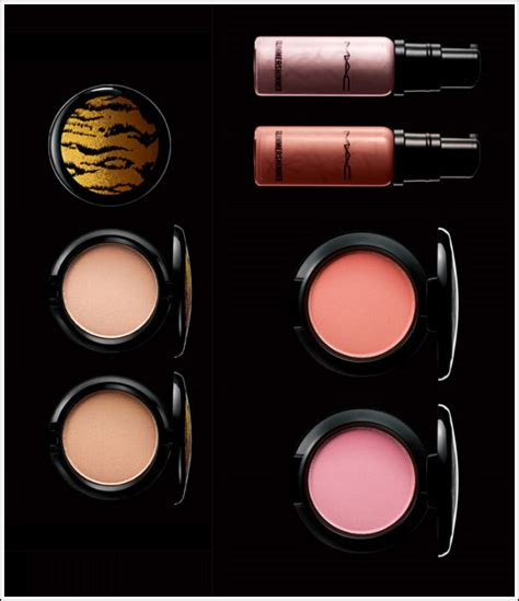 Mac Raquel Welch by Mac Cosmetics Raquel Welch Icon Collection Information