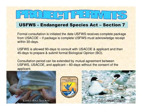 endangered species act section 9 engineering analysis for urban drainage systems