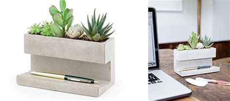 buy a planter kikkerland concrete desktop planter holycool net