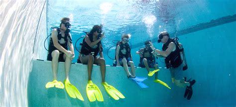 dive school dive school