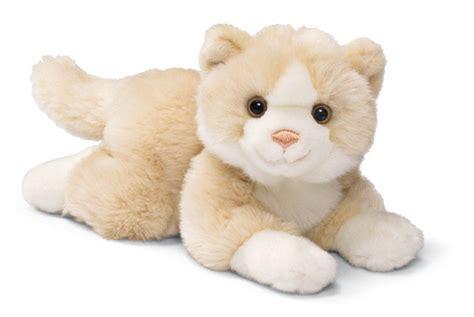 stuffed animals cat plush stuffed stuffed animals photo 11219370 fanpop