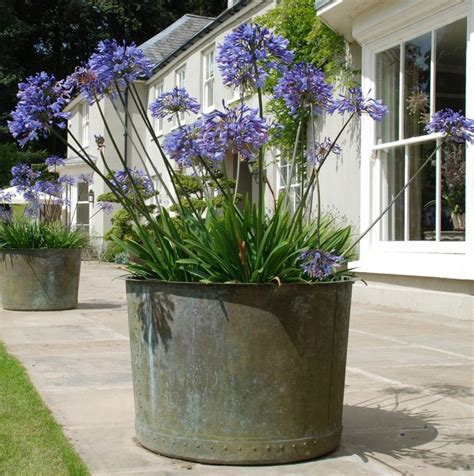 Large Copper Planter by Large Copper Planter Landscape
