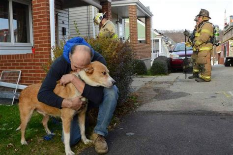 saves owner adopted saves owner and home from