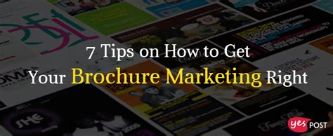 7 Tips On That Will Get Hits 7 tips on how to get your brochure marketing right yespost
