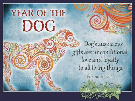 new year animals 1994 zodiac years zodiac and zodiac