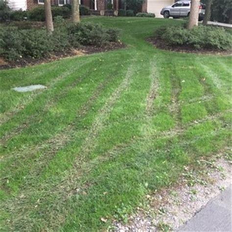 premium lawn and landscape 31 photos 21 reviews