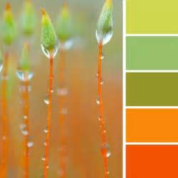 Color Combinations With Orange Orange Color Schemes Gallery