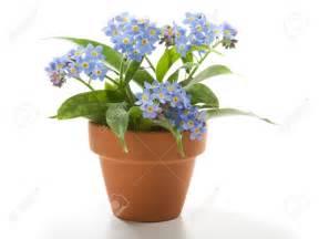 Flower Pot Flower Pot Part 1 Weneedfun