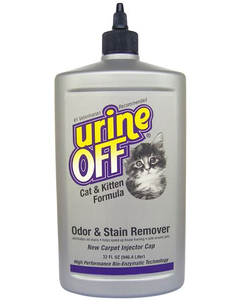 dog urine smell in house eliminating dog urine odor in house feral cat program austin