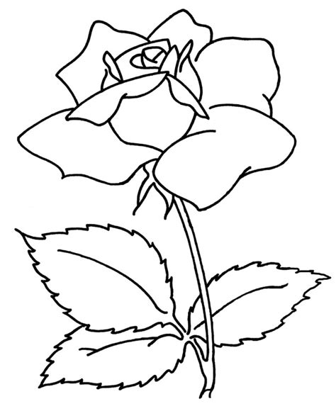 Flower Coloring Pages Printables 7 flowers coloring pages