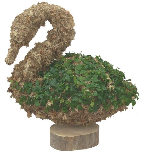 swan topiary topiary large swan for the home large