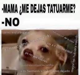 Memes En Espanol - memes chistes memes en espa 241 ol image 3712359 by olga