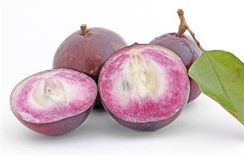 apple vietnam soon vietnam will ship fresh star apples to the u s