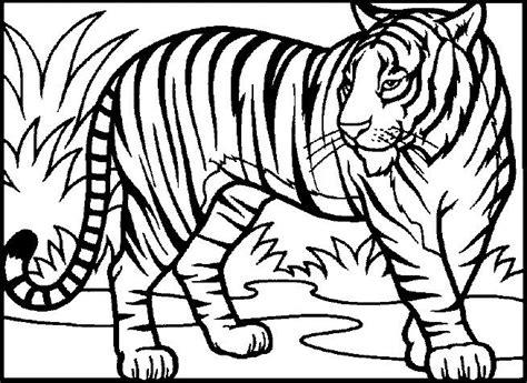 Vocalic R Coloring Page by 220 Ber 1 000 Ideen Zu Ausmalbilder Tiger Auf