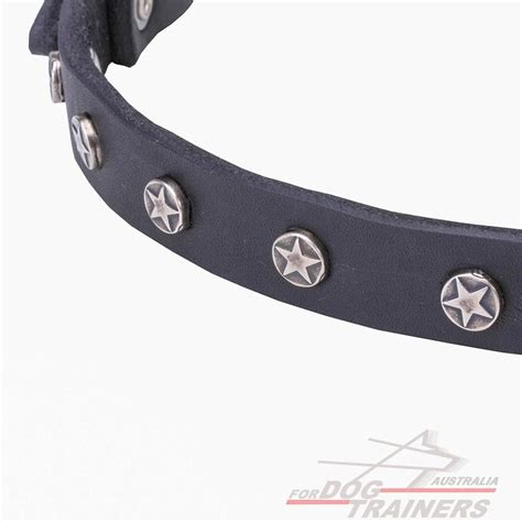 Leather Collar With Hello 20 Mm X 45 Cm leather handmade decorated canine collar nickel