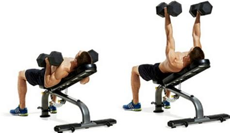dumbbell incline bench press top 10 chest exercises to get ripped for next summer