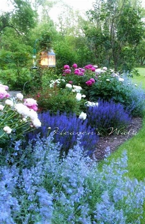 how to plant an cottage garden top 25 best cottage gardens ideas on