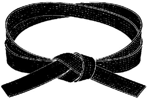 the dynamics of a black belt karate by jesse martial thoughts the meaning of a black belt
