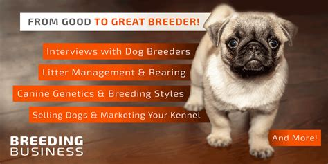 how to start breeding dogs in 5 easy steps gt gt 16 nice