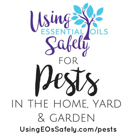 essential oils for garden pest bugs pests in the home yard garden using essential