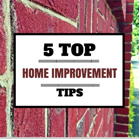 Canvassing Tips Home Improvement 5 Top Home Improvement Tips 187 The Purple Pumpkin