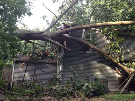 insurance tree falls neighbors house your michigan homeowners insurance policy when a tree falls mahar insurance