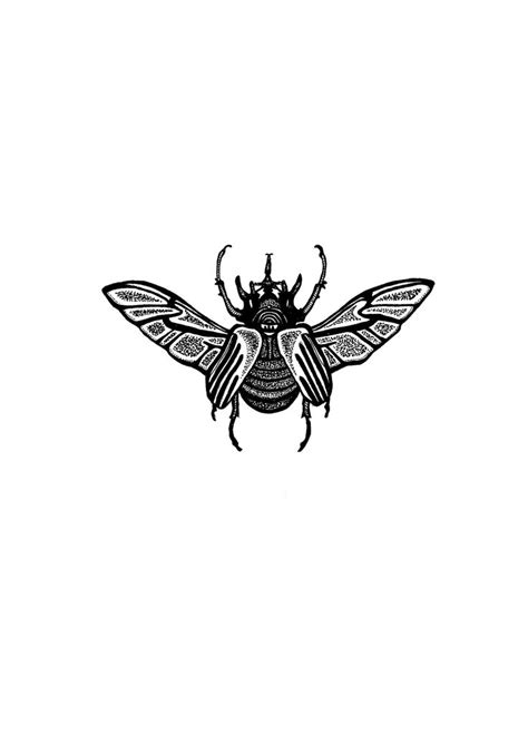 insect tattoo designs 25 best ideas about beetle on scarab