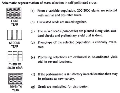 breed mass top 4 plant methods botany