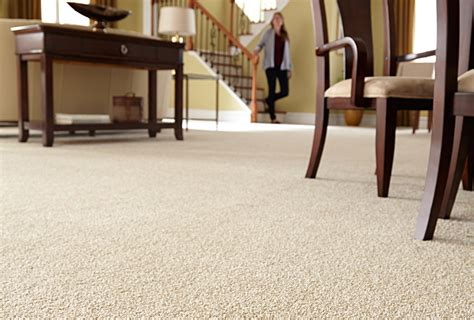 carpet buying guide which type is right for you