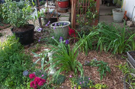 Cottage Plants by The Witch S Garden Reborn Taming The Feral Beast For A