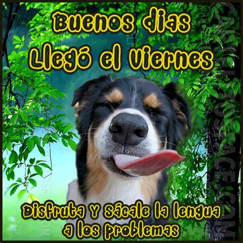 imagenes d buenos dias viernes imagenes animadas de perros llego el viernes para whatsapp