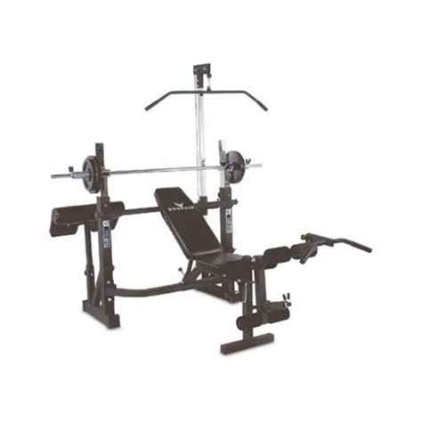 phoenix weight bench phoenix 99226 olympic bench