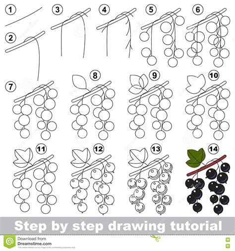pattern drawing games drawing tutorial blackcurrant stock vector image 75197637