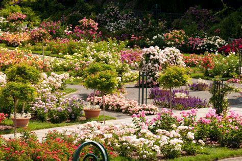Garden Images Peggy Rockefeller Garden Nybg