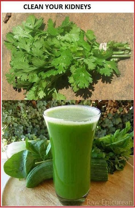 Detox Your Kidneys Naturally by How To Avoid Dialysis And Cure Kidney Disease Cleanse And